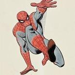 spider_raf