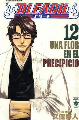 Bleach #12