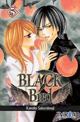 Black Bird #5