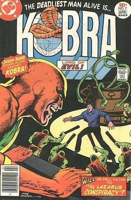Kobra (Grapa) #7