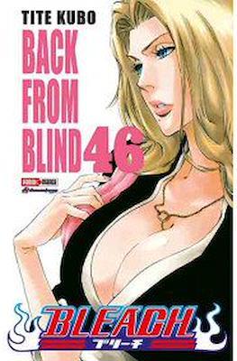 Bleach (Rústica) #46