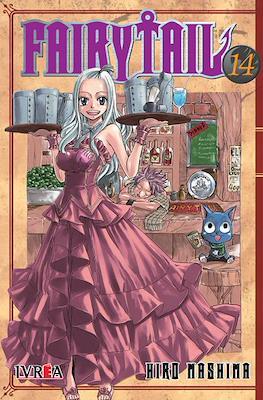 Fairy Tail (Rústica) #14