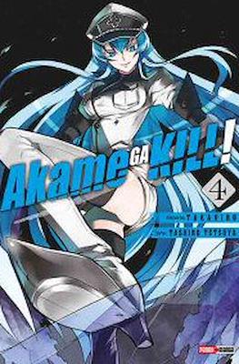 Akame ga Kill! (Rústica) #4
