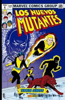 Los Nuevos Mutantes. Marvel Gold (Omnigold)