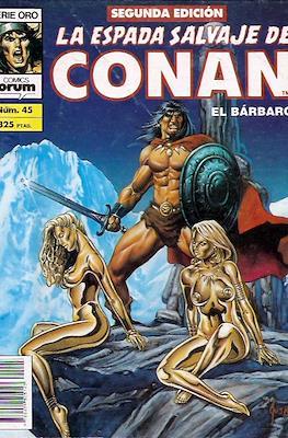 La Espada Salvaje de Conan Vol. 1. 2ª edición (Grapa. 64 páginas) #45