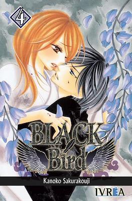 Black Bird #4
