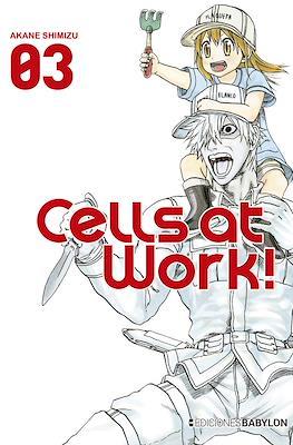 Cells at Work! (Rústica 176 pp) #3