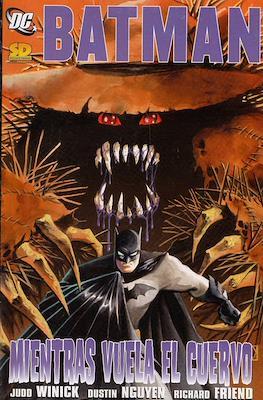 Batman Mientras Vuela El Cuervo