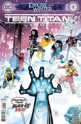 Teen Titans Endless Winter Special (2021)