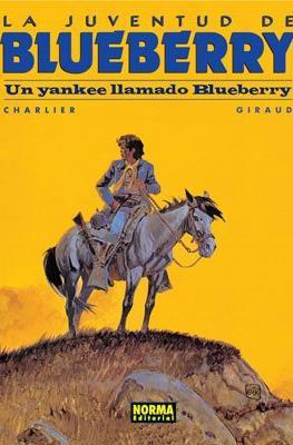 Blueberry #13