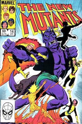 The New Mutants (Grapa) #14