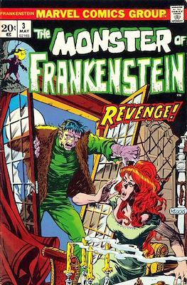 The Frankenstein monster (Grapa) #3