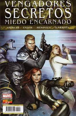 Vengadores Secretos (2011-2015) (Grapa) #13