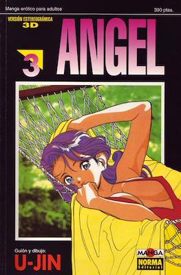 Angel (Rústica) #3