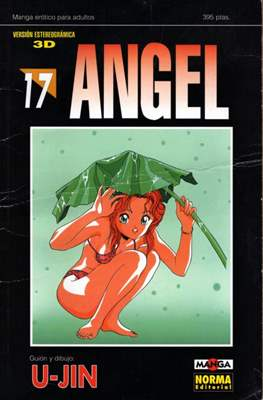 Angel (Rústica) #17