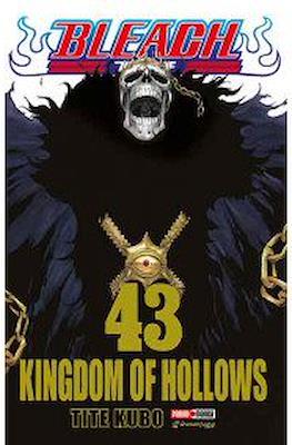 Bleach #43