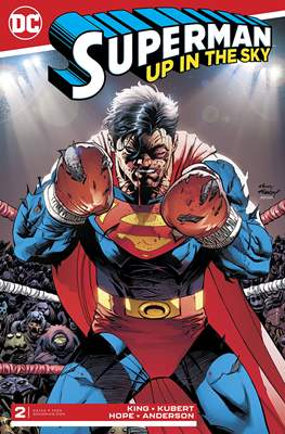 Superman: Up In The Sky (Comic Book) #2