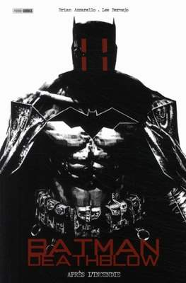 Batman / Deathblow. Après l'incendie