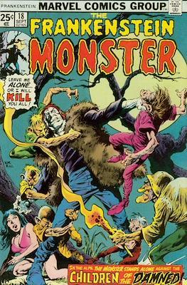 The Frankenstein monster (Grapa) #18