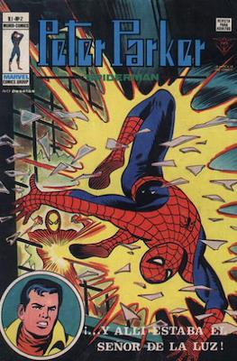 Peter Parker Spiderman Vol. 1 (1978-1980) (Grapa 36 pp) #2