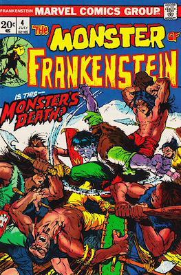 The Frankenstein monster (Grapa) #4
