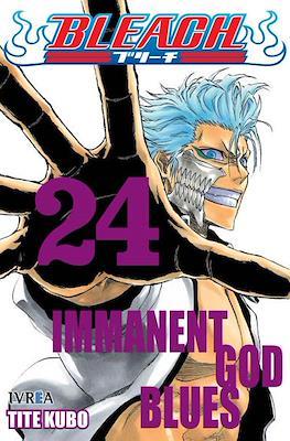 Bleach (Rústica) #24
