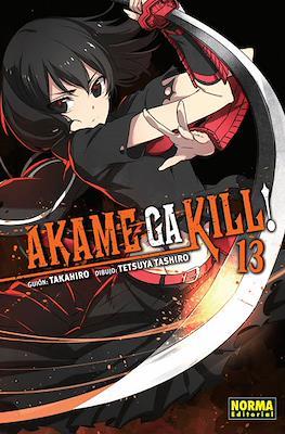 Akame ga Kill! (Rústica con sobrecubierta) #13