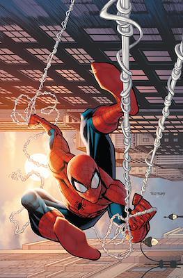 The Amazing Spider-Man #4