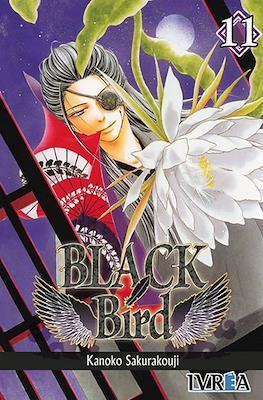 Black Bird #11