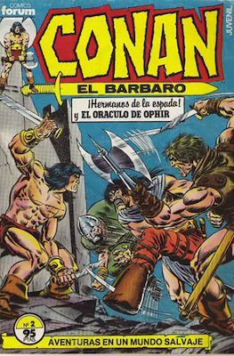 Conan el Bárbaro (1983-1994) (Grapa. 19x27. 36/32/24 páginas. Color.) #2