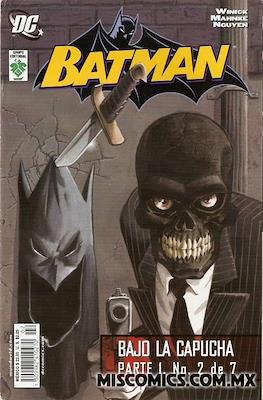 Batman. Bajo la capucha parte 1 #2