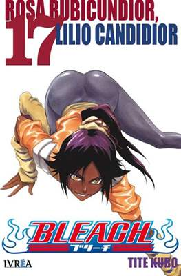 Bleach (Rústica) #17