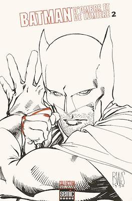 Batman. D'ombre et de lumière (Broché) #2