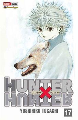 Hunter X Hunter (Rústica) #17