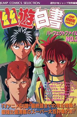 幽遊白書 パーフェクトファイル Yu Yu Hakusho Perfect File (Tankoubon) #2