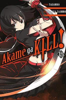 Akame ga Kill! (Softcover) #13