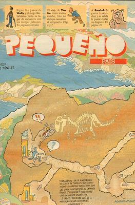 El Pequeño País (Grapa) #597