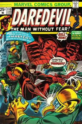 Daredevil Vol. 1 (1964-1998) (Comic Book) #110