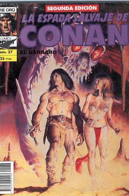 La Espada Salvaje de Conan Vol. 1. 2ª edición (Grapa. 64 páginas) #37
