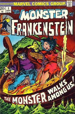 The Frankenstein monster (Grapa) #5