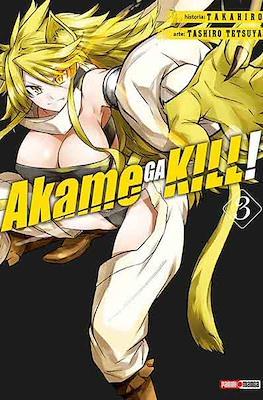 Akame ga Kill! (Rústica) #3