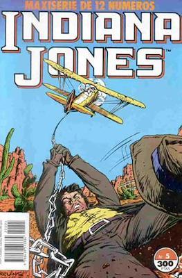 Indiana Jones #5