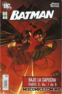 Batman. Bajo la capucha parte 2