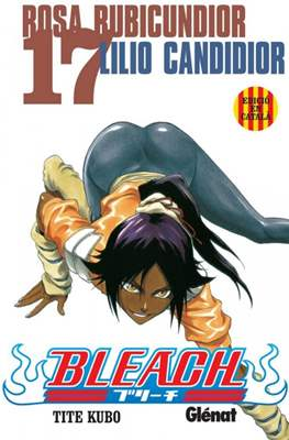 Bleach #17