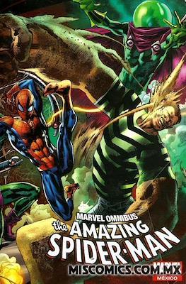 Marvel Omnibus The Amazing Spider-Man