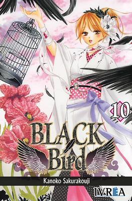 Black Bird #10