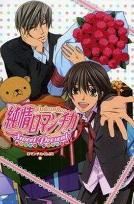 Junjo Romantica Sweet Present TV Anime Art Book