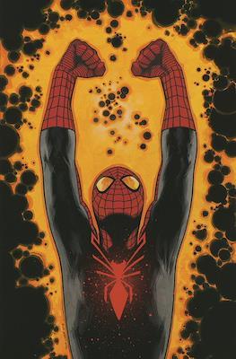 Spiderman Superior (Grapa 32 pp) #2