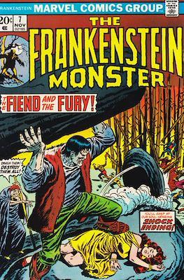 The Frankenstein monster (Grapa) #7
