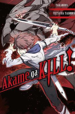 Akame ga Kill! (Softcover) #14